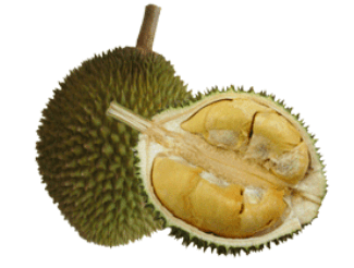 <!--:en-->MUST-TRY FRUITS OF THAILAND<!--:-->